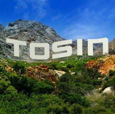Tosin Adenaike avatar picture